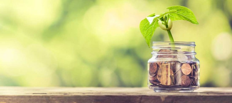 savings investment advice consultant